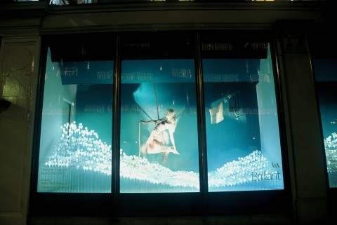 Installation in Harvey Nicols London