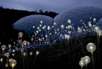 Field of Light at the Eden Project